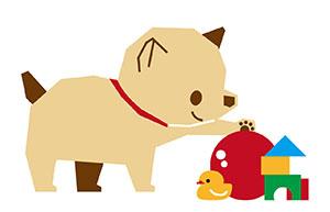 パピー・子犬 ドッグトレーニング